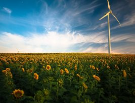 Energies Alternatives: quelques idées pour éviter le pétrole