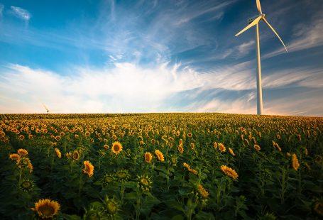 Energies Alternatives : quelques idées pour éviter le pétrole