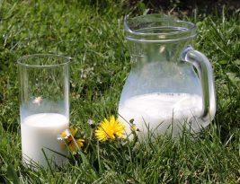 L'équipement de haute qualité est une garantie de respect de l'environnement pour la production laitière.